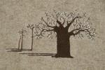 Baobab foncé